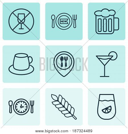 Set Of 9 Meal Icons. Includes Cocktail, Fresh Dining, Lemonade And Other Symbols. Beautiful Design Elements.