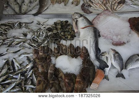 Fresh fish sold in the fish market.
