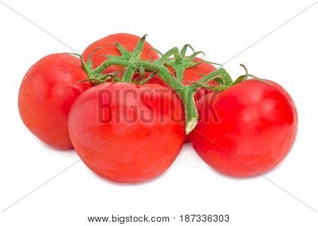 Branch of the ripe red tomatoes with droplets of dew closeup on a light background