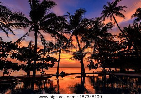 Dramatic Sunset With Silhuettes Palm In Thailand