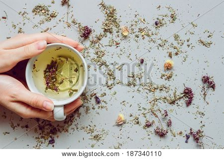 Tea Background. Hands Holding Cup Of Hot Tea. Dry Herbal Tea On The Gray Background, Top View. Copy