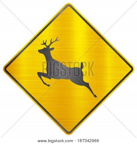 wild animals deer safety sign animal  warning
