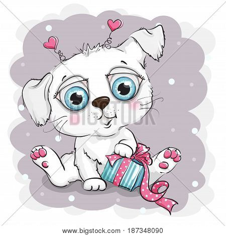 Beautiful and cute white puppy with gift box
