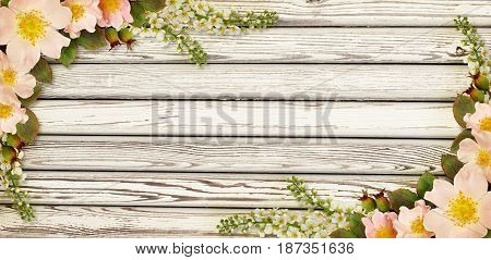 Wild rose flowers corner arrangements on old white painted wooden background