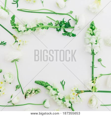 Pattern made of white flowers - ranunculus, snapdragon and tulip on white background. Flat lay, top view. Frame of spring flowers