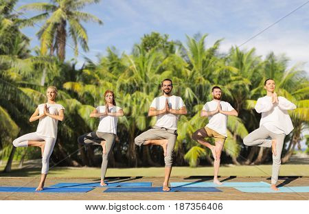yoga, fitness, sport and recreation concept - group of people in tree pose on mats outdoors