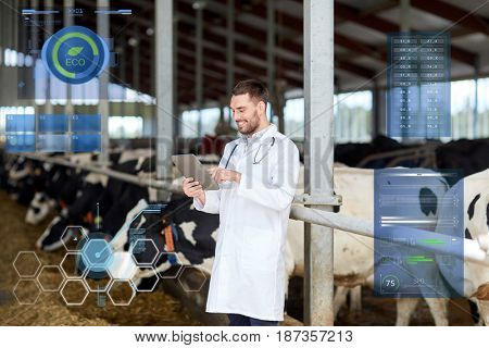 agriculture industry, people and animal husbandry concept - veterinarian or doctor with tablet pc computer and herd of cows in cowshed on dairy farm