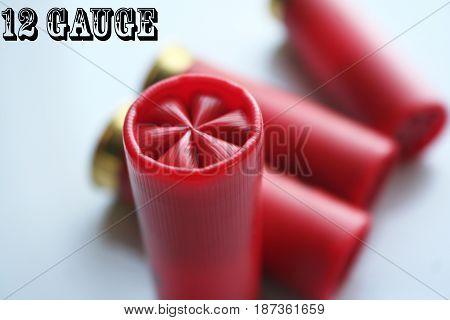 12 Gauge Shotgun Shells Stock Photo High Quality