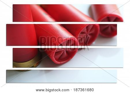12 Gauge Shotgun Shell Art High Quality