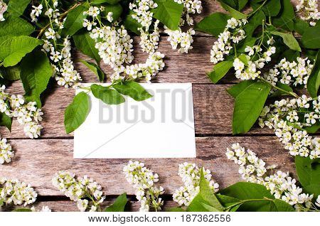White sheet of paper surrounded by foliage on a background of old wood