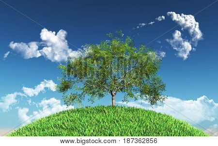 3D render of a willow tree on a grassy globe