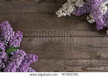 Lilac blossom on rustic wooden background with empty space for greeting message. Mother's Day. Spring background concept. Top view