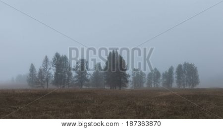 Autumn landscape in in the morning mist, Altai region, Siberia, Russia