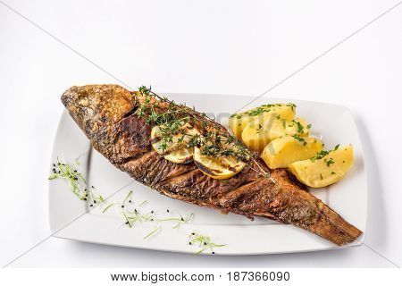 Grilled carp fish with rosemary potatoes and lemon, close up. Fish on a white plate. Selective focus. Isolated on white background