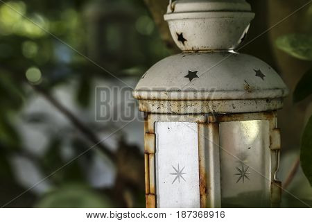 A anesthetic garden candle lantern hanging on a branch