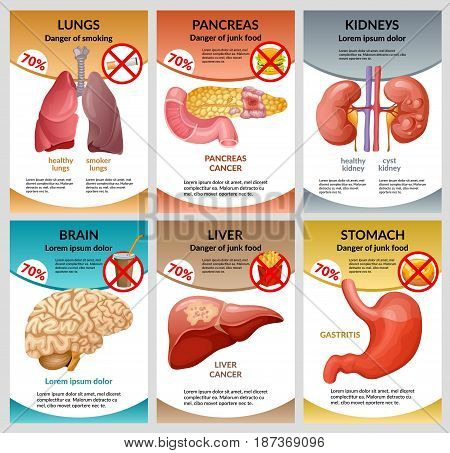 Scientific healthcare infographic template with different harmful habits leading to diseases of internal human organs vector illustration
