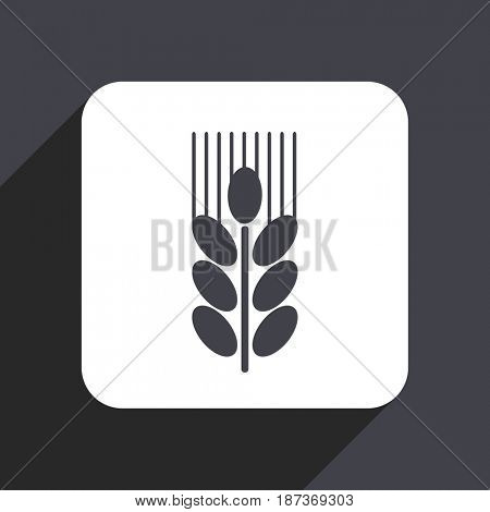 Grain flat design web icon isolated on gray background