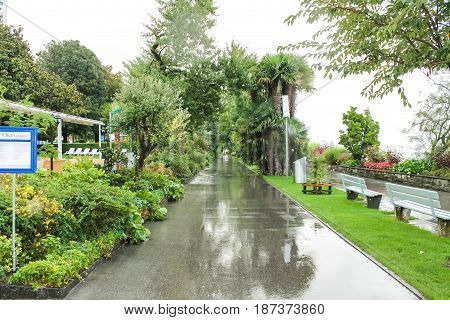 Park Alley In Montreux, Switzerland. Alley With Palm Trees, Trees, Grass And Benches.