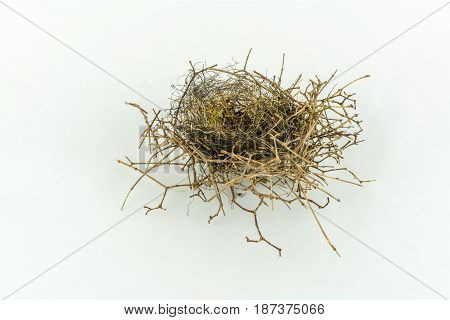 Close up of a small empty bird´s nest isolated on white background slightly from the side. Studio shot.