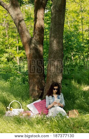 Summer time. Young woman at a picnic reading an e-book. Selective focus.