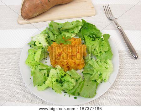 Sweet potato mash and salad on plate