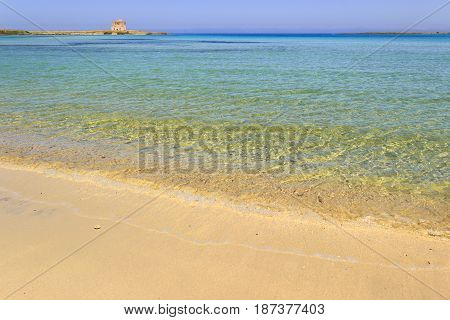 Summer seascape,Apulia coast: Nature Reserve of Torre Guaceto. Carovigno (Brindisi) -ITALY- Mediterranean maquis: a nature sanctuary between the land and the sea. On background the watchtower.