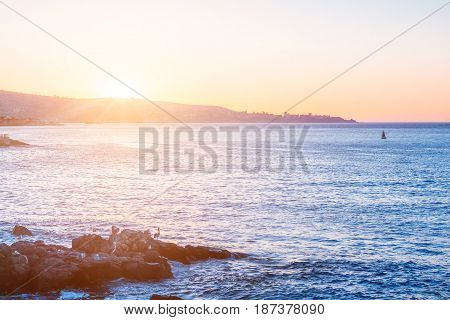 Evening View Of Pacific Ocean With Stones On The Foreground
