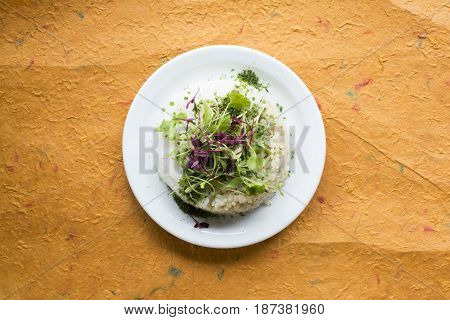Rice With Salad Green Topping In Round White Plate