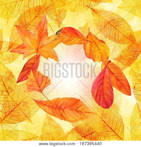 Autumn design template with vibrant fall leaves, yellow and orange. An artistic template for a card, flier, or invitation, with a place for text