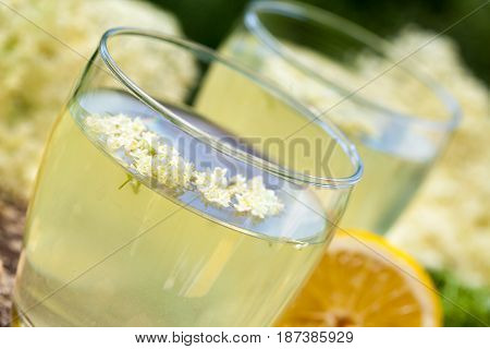 Elderberry flower flavored summer refreshment. Homemade elderberry syrup juice.