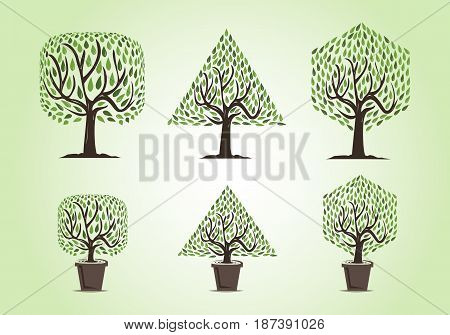 Set of tree with two types of trees : garden trees and decorative trees , rounded square tree, triangle tree, hexagon tree with green leaves and dark brown branches.