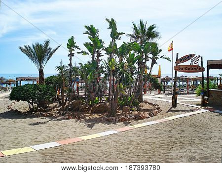 Oases from bushes and trees decorate beaches of the resort city of Torremolinos
