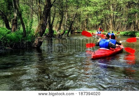 Tourists kayaking on river in the forest