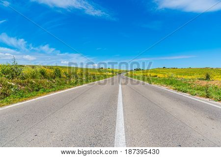 Clear sky over a country road in Sardinia Italy