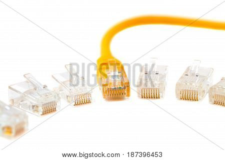An ethernet wire cable and cable head into (head rj45)networkRJ45plug. Isolated. Close-up