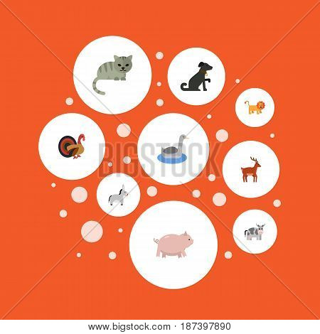 Flat Piggy, Hound, Jackass And Other Vector Elements. Set Of Mammal Flat Symbols Also Includes Forest, Neck, Horns Objects.