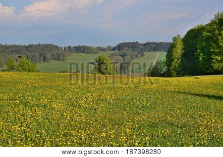 view on the landscape of South Bohemia. Czech Republic