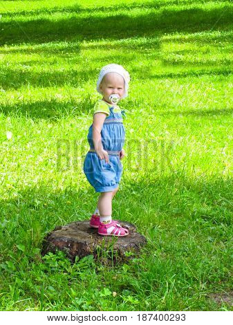 girl in a blue suit stands on a tree stump on the background of green meadows