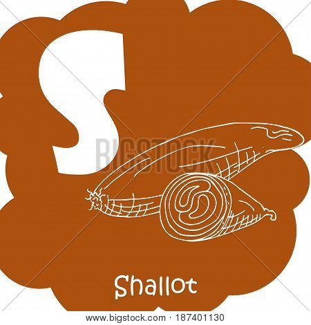 Vector vegetable alphabet for education. Illustration for kids. Letter S for Shallot.