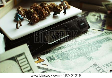 Marijuana Profits With Money High Quality Stock Photo