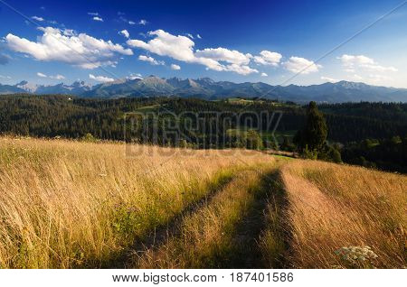 Mountain trail in the summer afternoon - breathtaking natural landscape and cloudscape