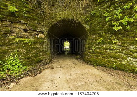 An old tunnel leading to woods on the other side during spring.