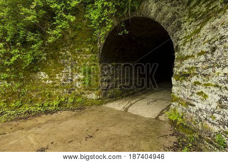 An old tunnel on a wet spring day.