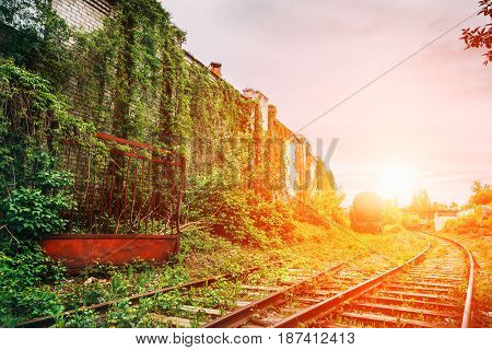 The old abandoned railway or rail road overgrown with grass in sunset time