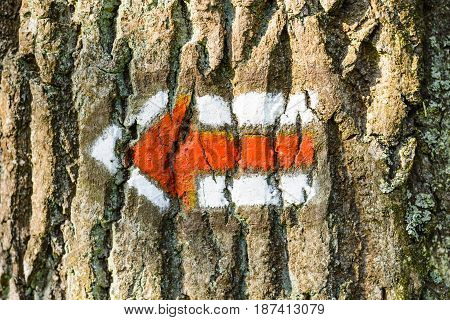 Red tourist sign on a tree trunk. A red arrow indicating the direction. Tourist signs in the Czech Republic.