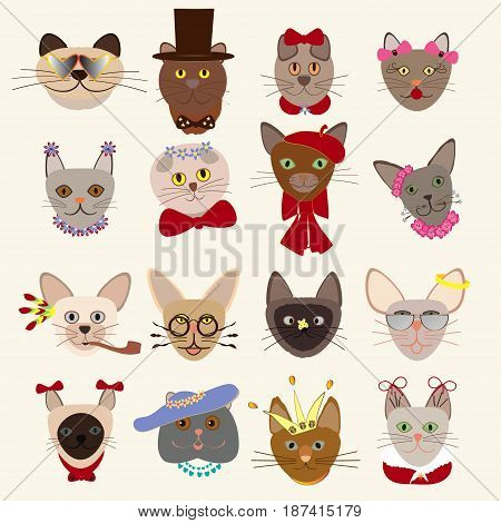 Colored cute cats heads set of different breeds wearing glasses hats bow ties feathers crown decorative elements isolated vector illustration
