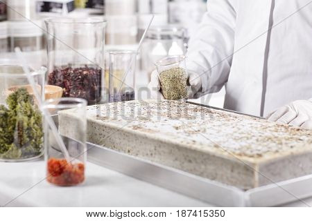 Horizontal Portrait Of Scientific Work In Laboratory. Scientist In White Gown Working With Different