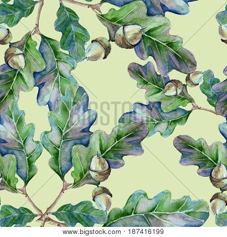 Background is a branch of an oak tree with leaves and an acorn. Seamless pattern. Watercolor illustration.