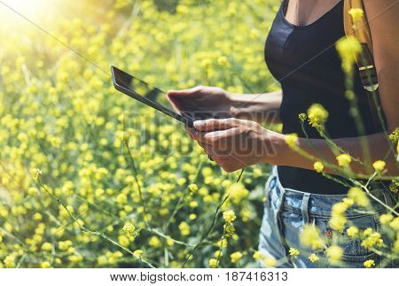 Girl traveler using gadget on yellow flowers background close. Female hands photographer take view sun flare on cell camera. Hipster texting message on tablet computer mockup of blank empty screen