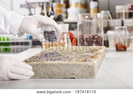 Horizontal Laboratory Portrait Of Difficult Process Of Seed Production And Planting Exotic Plants In